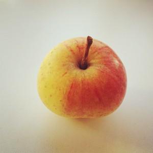 Zijden hemdje appel; © Marjan Ippel