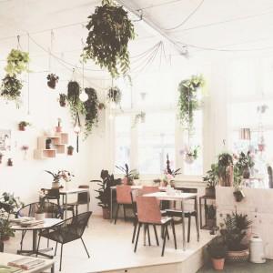 Stadstuinwinkel/slow-coffeebar Wildernis met seventies hangbaarden aan het plafond; © Marjan Ippel