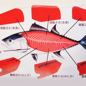 Geen pijltje naar het tonijnmerg. Tsukiji Vismarkt Tokio; © Marjan Ippel