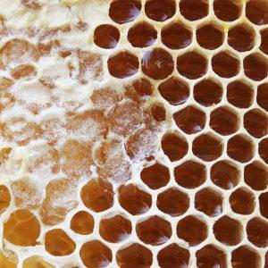 Basisingrediënt voor jun-thee: rauwe honing; © Marjan Ippel